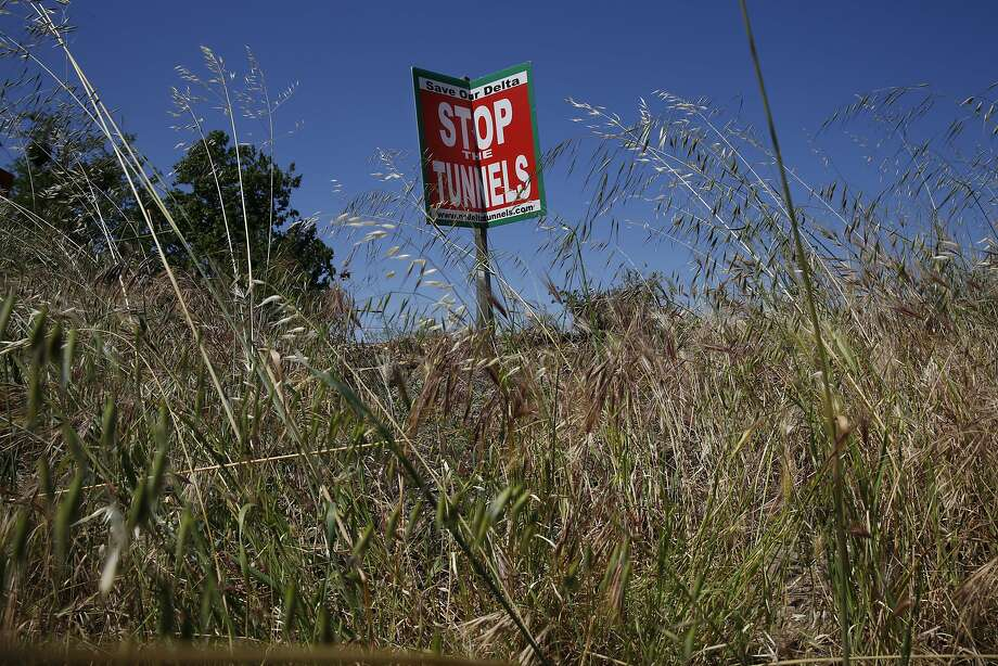 A sign protesting Governor Brown's proposed twin tunnels that will divert water from the Sacramento River southward sways in the wind along River Road on the Sacramento River April 14, 2015 in Walnut Grove, Calif. Photo: Leah Millis, The Chronicle