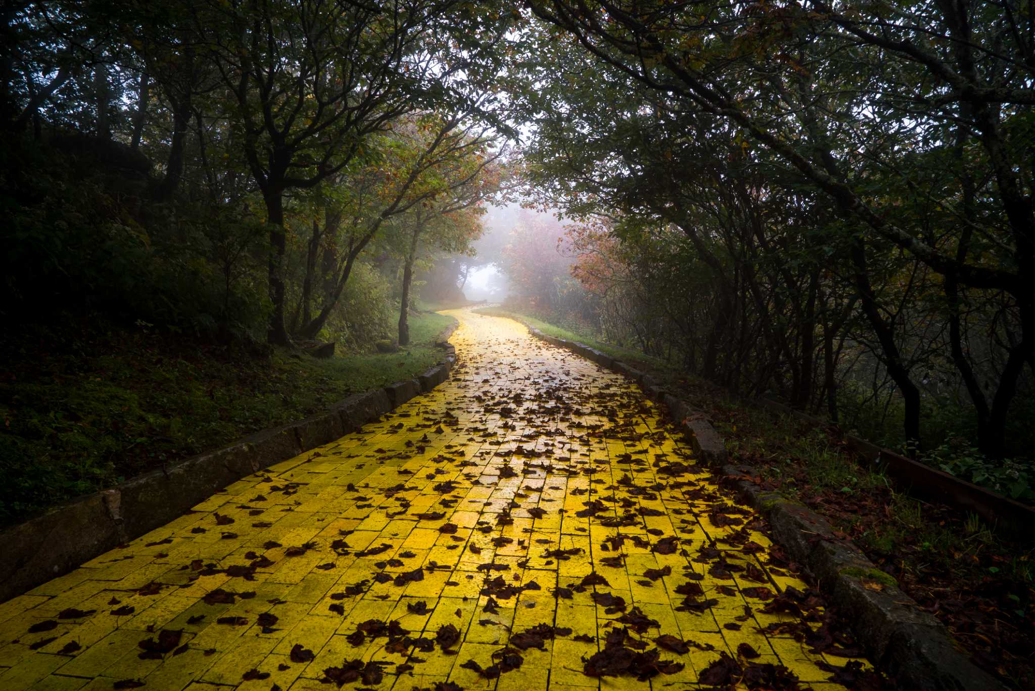 Photos Show Remnants Of Creepy Abandoned Wizard Of Oz Theme Park In North Carolina
