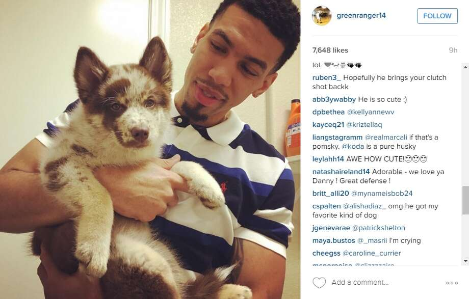"""Danny Green and his new pet, a Pomsky named """"Gizmo."""""""