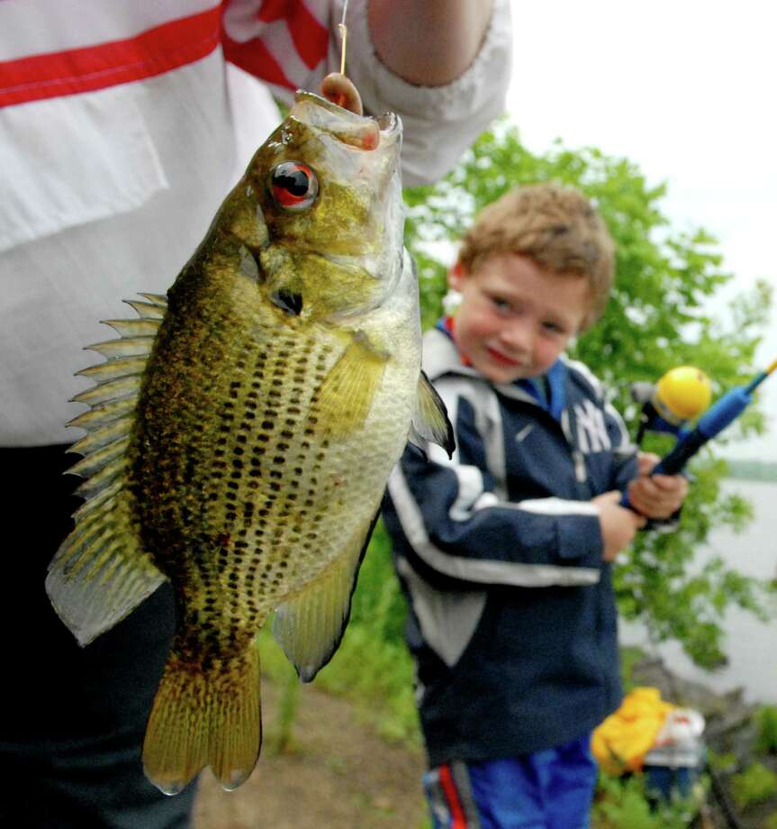 Bass-fishing season stars this weekend in New York. Keep clicking to seem some of the Capital Regions's big (and little) catches shared by readers. Photo: CINDY SCHULTZ / ALBANY TIMES UNION