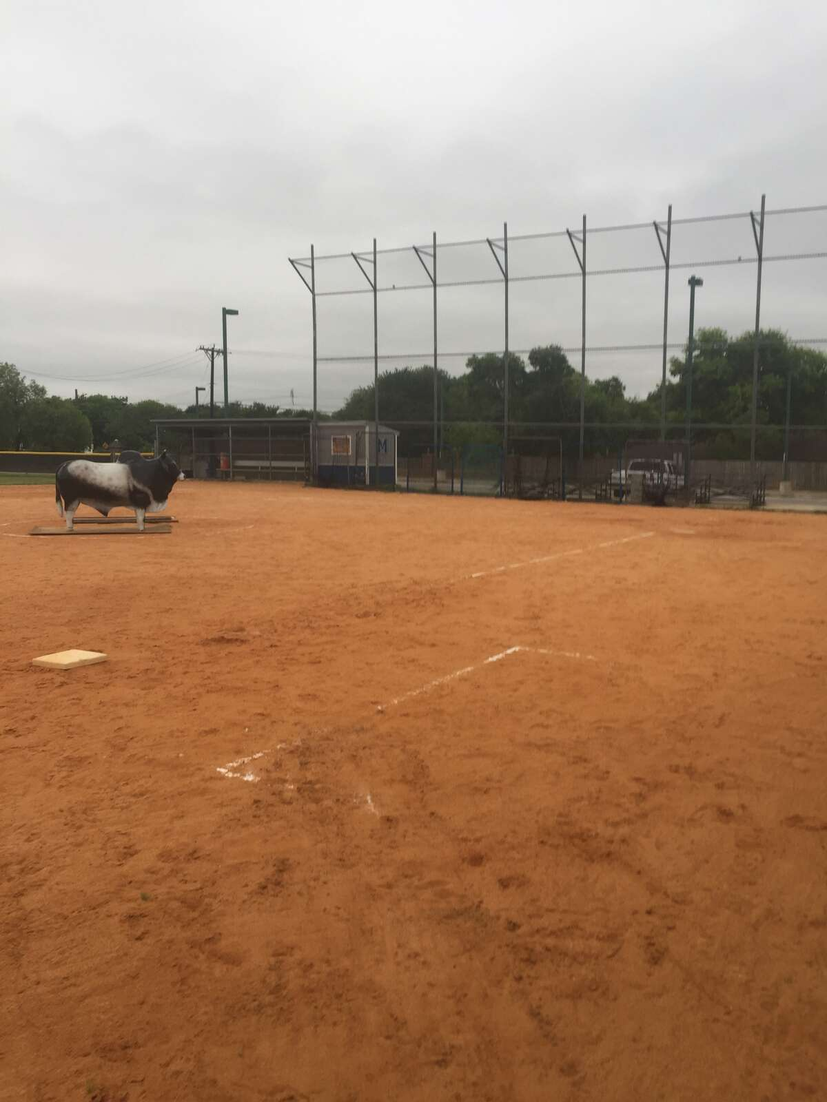 NEISD officials say the students removed the statue from a courtyard and placed it on the school's softball field early Tuesday morning.