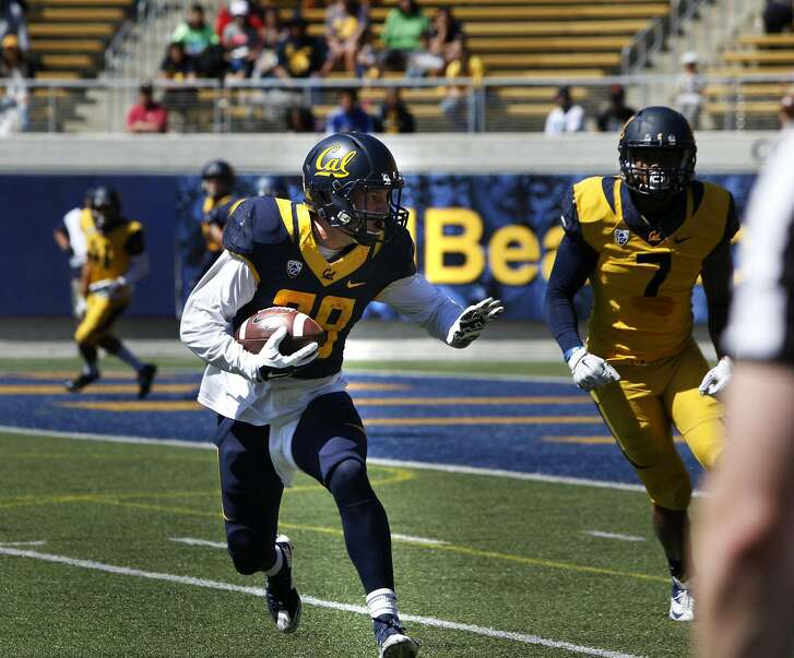 Patrick Laird goes for a touch down during UC Berkeley's Cal Football Spring Scrimmage in Berkeley, Calif., on Saturday April 16, 2016