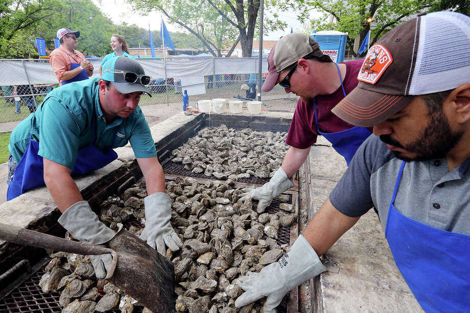 Justin Housman (from left), David Babineaux, and Leonardo Herrera bake oysters during the 2016 Fiesta Oyster Bake Saturday April 16, 2016 on the St. MaryÕs University campus. Photo: Edward A. Ornelas, San Antonio Express-News / © 2016 San Antonio Express-News