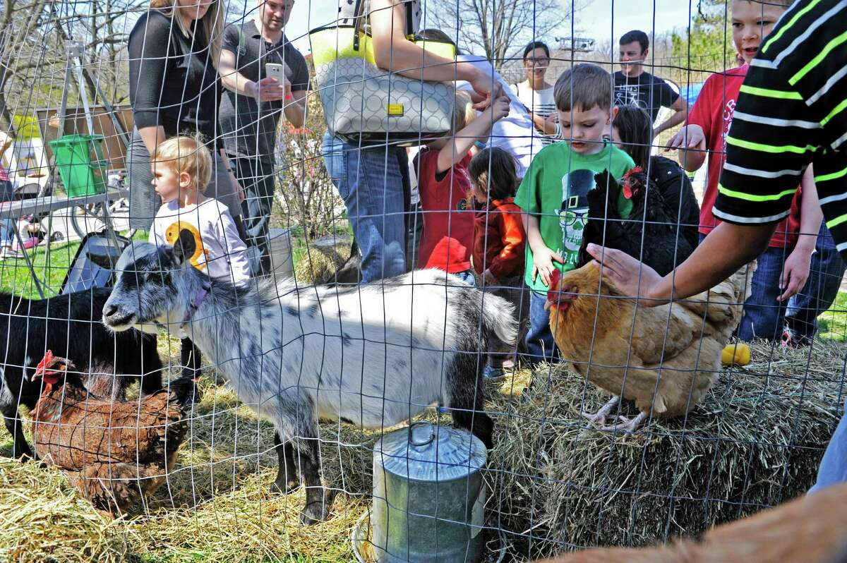 Children pet chickens and goats at a booth set up by RADIX Ecological Sustainability Center during the Earth Day Expo on Sunday, April 17, 2016, in Albany, N.Y. The center is located in the South End of Albany. (Paul Buckowski / Times Union)