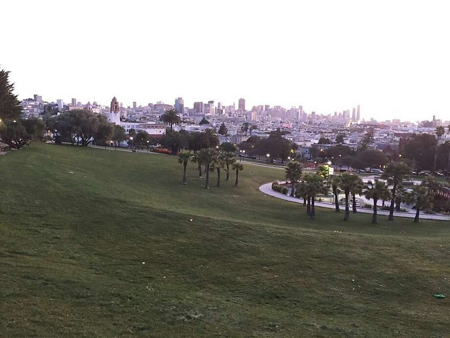 FILE photo: A hawk was found dead at Dolores Park on Christmas Eve. Photo: Amy Graff