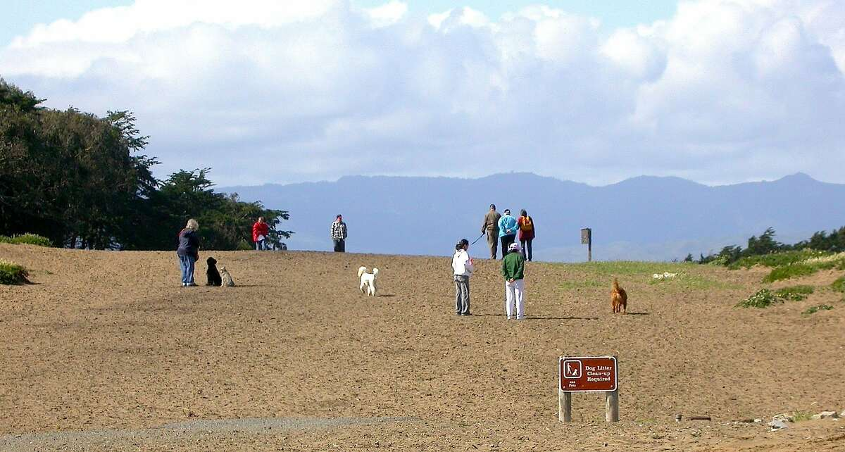 Fort Funston on the coast of San Francisco is one of the Bay Area's most popular parks to take dogs -- and also one of the most contentious, a new rules propose to restrict dogs to specified trails in the Golden Gate National Recreation Area