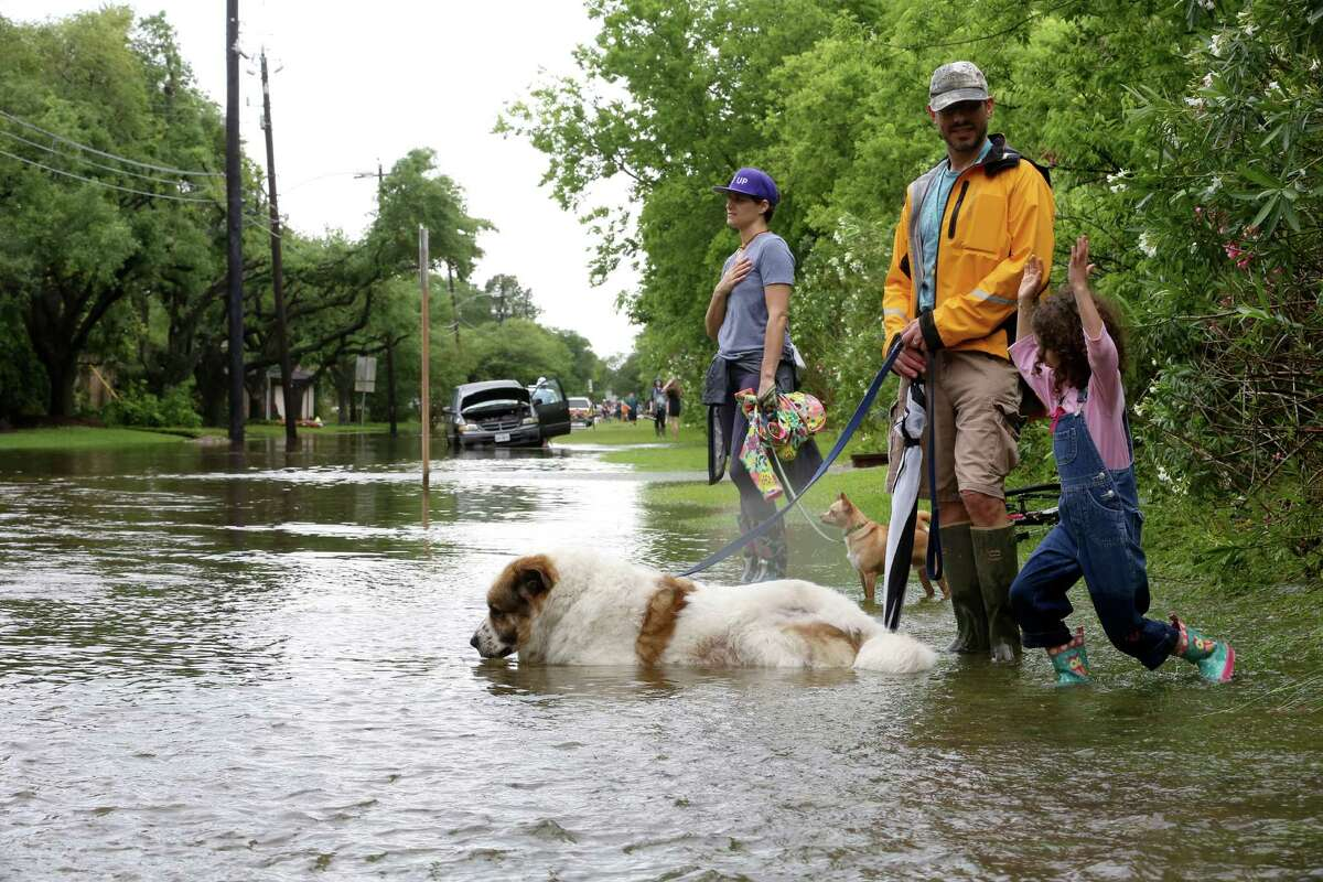 Annabella Zoller, 6, plays with her dad Jason and mother Jessica in floodwaters near Brays Bayou in the Meyerland area, Monday, April 18, 2016, in Houston. ( Jon Shapley / Houston Chronicle )