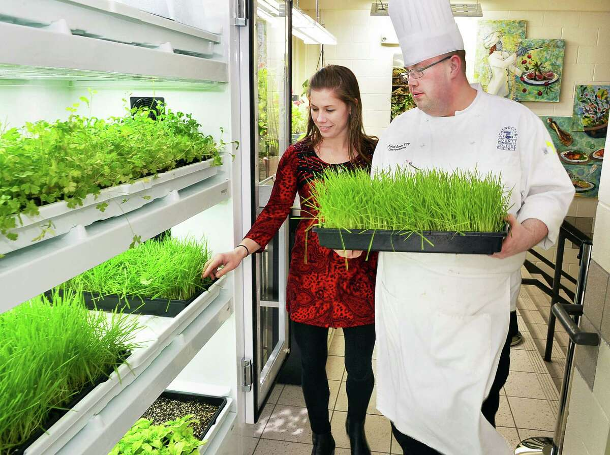 Department of Hotel, Culinary Arts and Tourism purchasing agent Holly Storm and certified executive chef Michael Stamets check on herb gardens in Schenectady County Community College's