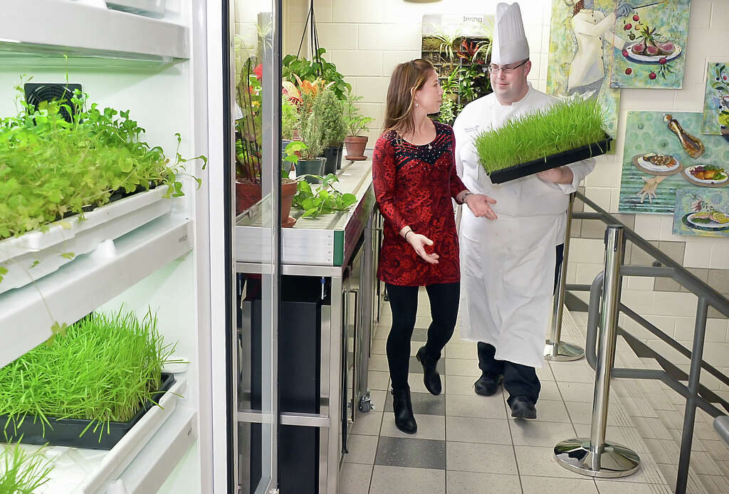 don't be a 'parsley doubter' - times union