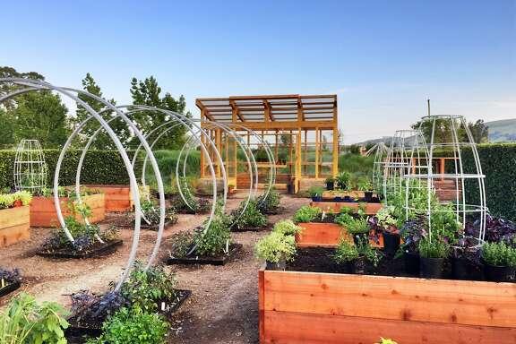Sunset magazines new test garden at Cornerstone