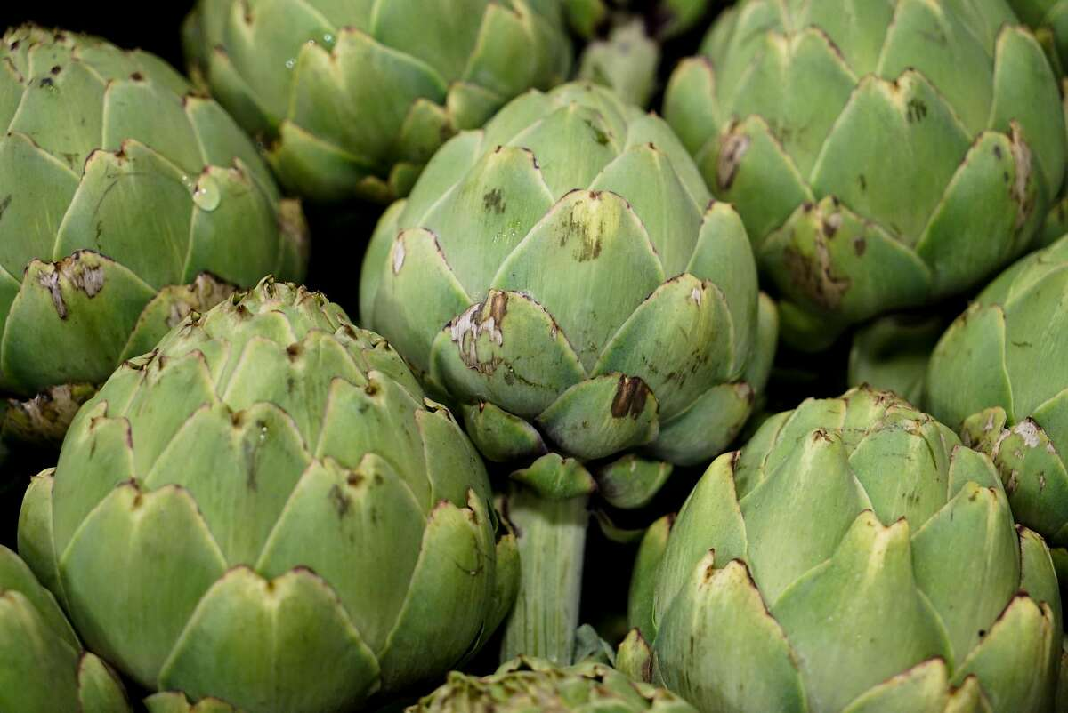 Frosted artichokes are kept cool at Coke Farms in San Juan Bautista.