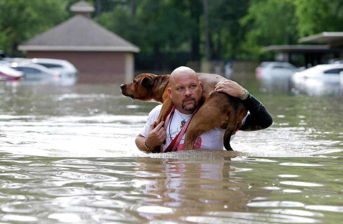 Louis Marquez carries his dog Dallas through floodwaters after rescuing the dog from his flooded apartment Tuesday, April 19, 2016, in Houston. Storms have dumped more than a foot of rain in the Houston area, flooding dozens of neighborhoods. (AP Photo/David J. Phillip) ORG XMIT: TXDP128