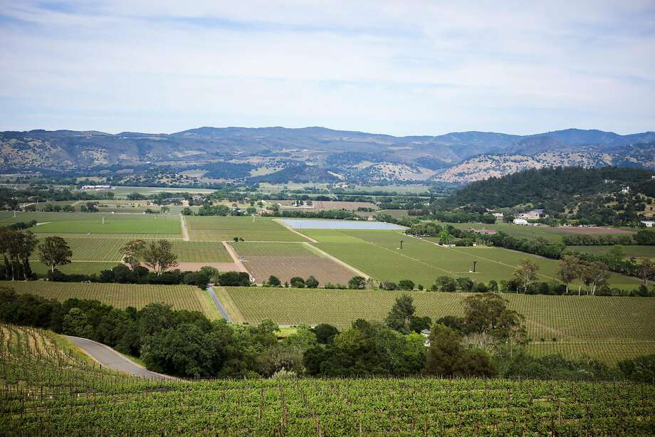 A view of Napa Valley from Harlan Estate, a winery tucked away in the hills. Photo: Gabrielle Lurie, Special To The Chronicle