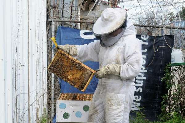 Montrose-area beekeeper Nicole Buergers inspects a honeycomb. Buergers has started her own bee-centered business, the Bee2Bee Honey Collective. Buergers also sells honey at the Third Saturdays' market at East End's Houston Makerspace.