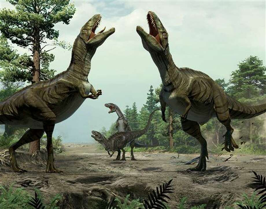 This illustration provided by Lida Xing and Yujiang Han in January 2016 shows theropods engaged in scrape ceremony display activity, based on trace fossil evidence from Colorado. The scientists who discovered the long grooves say they were dug by the feet of dinosaurs during a frenzied ritual to attract mates. Such behavior is seen nowadays in some birds, and the discovery suggests that two-legged, meat-eating dinosaurs called theropods did it about 100 million years ago, the researchers said in a report released Thursday, Jan. 7, 2016. (Lida Xing/Yujiang Han via AP)