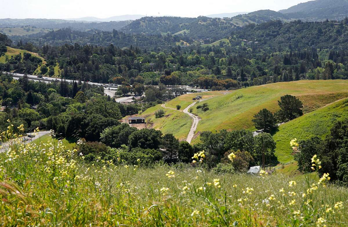 The site of a proposed housing development, (center right) at the south east corner of Pleasant Hill Road and Deer Hill Road in Lafayette, California on Wed. April 20, 2016. Sonja Trauss the founder of the group San Francisco Bay Area Renters Federation filed a suit against the city of Lafayette because they scaled the development originally a 312-unit apartment building way down so to 44 single-family homes.