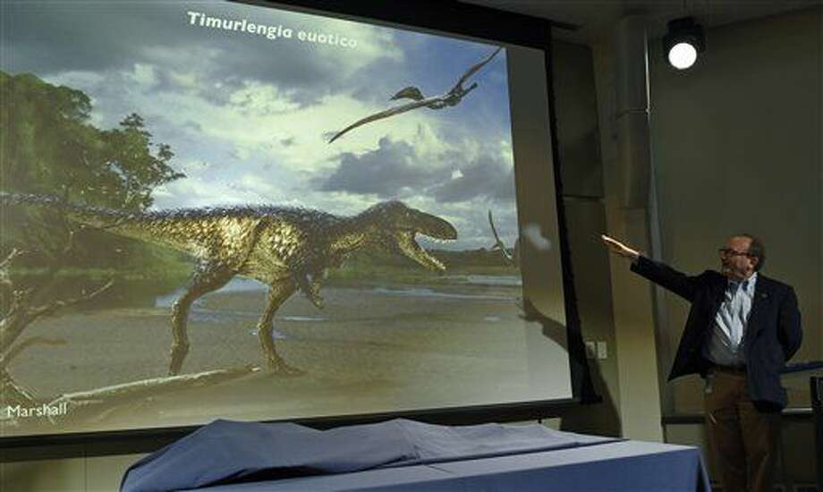 Hans-Dieter Sues, chair of the Department of Paleobiology at the Smithsonian's National Museum of Natural History, unveils a new dinosaur, Timurlengia euotica, during a news conference in Washington, Monday, March 14, 2016. The bones of a previously unknown member of the evolutionary branch that led to the huge tyrannosaurs were found Uzbekistan. This earlier dinosaur lived about 90 million years ago, south of what is now the Aral Sea. It looked roughly like a T. rex, but was only about 10 to 12 feet long and weighed only about 600 pounds at most, Sues said. (AP Photo/Susan Walsh) Photo: Susan Walsh