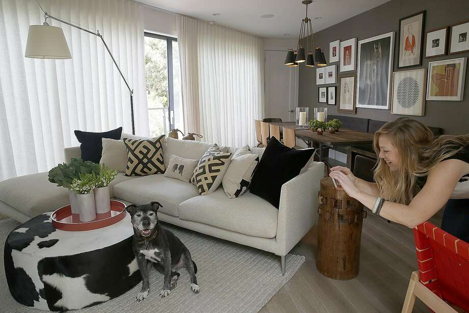 Homeowner Amanda Holt takes a photo of her dog, Wally, in the living room of her S.F. home. Photo: Liz Hafalia, The Chronicle