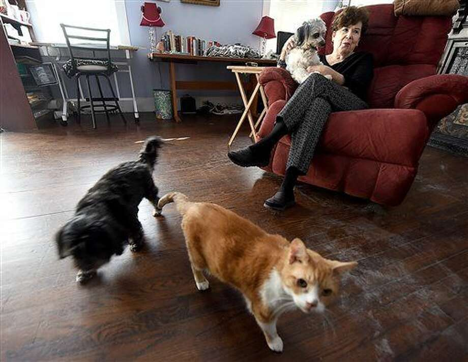ADVANCE FOR WEEKEND EDITIONS MARCH 26-27 - In this March 11, 2016 photo, Caroline Brown holds her dog, Sugar, as her other dog, Baby Bear, and cat, Tommy, walk around her living room in Dothan, Ala. Brown, who has had pets all her life, said having her two dogs and two cats at home has really helped her now that's she retired.(Jay Hare/Dothan Eagle via AP) MANDATORY CREDIT Photo: Jay Hare