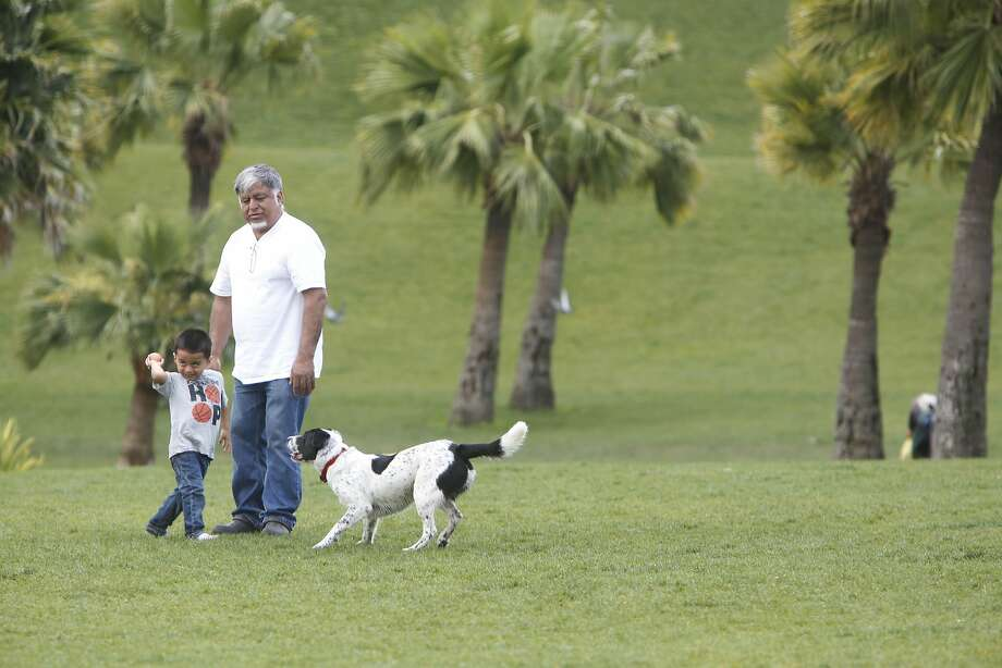 Mateo Diaz, 3, gets set to throw a ball to Kirsten Dahl's dog, Boris, as Mateo's grandfather, Jorge Perez, watches amid the palm trees last week in Dolores Park. Photo: Lea Suzuki, The Chronicle
