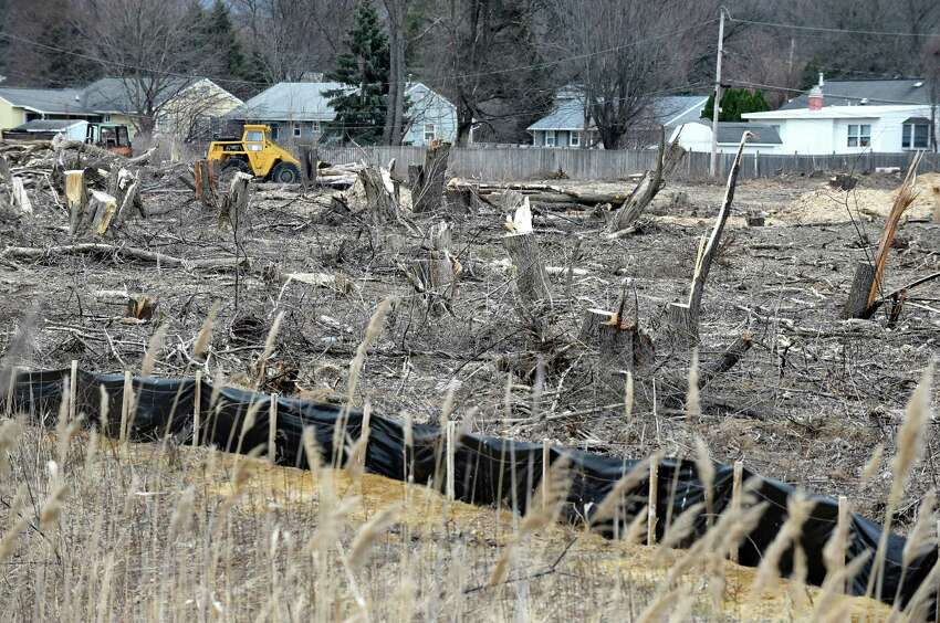Homes are now exposed, due to mature trees being taken down by developers, on Maxwell Road on Friday, March 25, 2016, in Colonie, N.Y. (Cindy Schultz / Times Union)