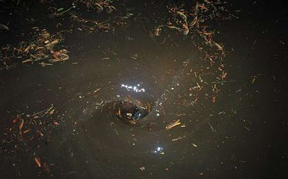 Photo shows debris swirling in a small whirlpool in Bad Axe.