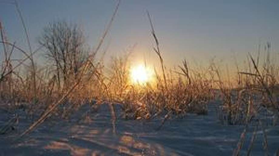 Using a gloved hand for a tripod, and to keep the camera off the snow, a swing-out viewfinder on a point-and-shoot digital camera was used to line up the horizon before taking this shot of the sun rising over frost-covered weeds.