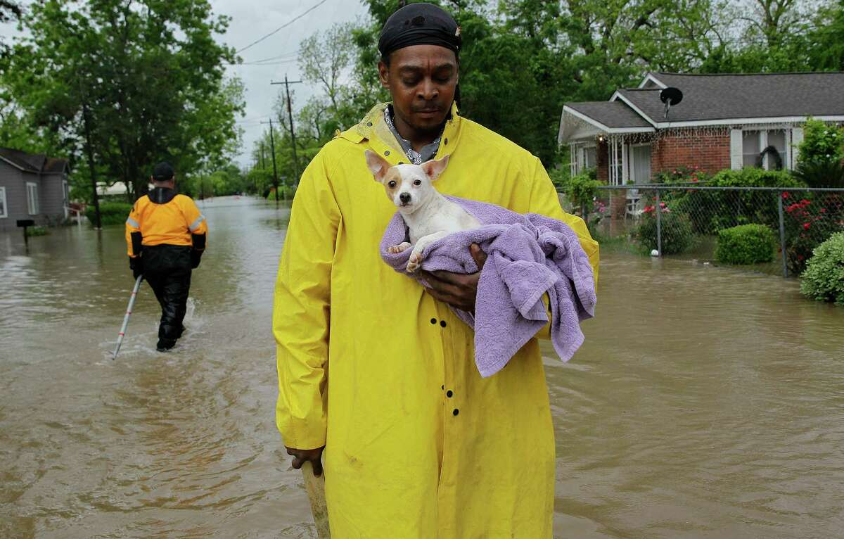 Kevin Turner holds onto Princess, his pregnant dog, while take her out of the flooding neighborhood on Thursday, April 21, 2016, in Warton. ( Elizabeth Conley / Houston Chronicle )