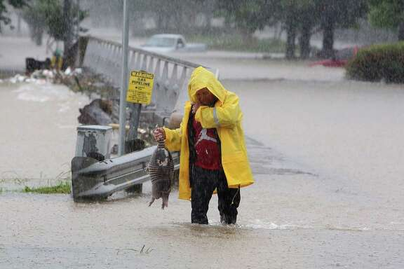 A man rescues an armadillo from high water near Greens Bayou and Greens Road during  Monday's flooding. The photo has gone viral, with many calling it the perfect Houston photo.