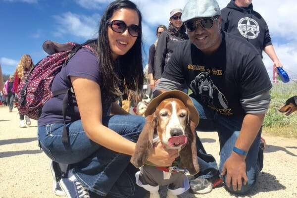Dog owners Amy and Prince from Half Moon Bay pose with their dog Wellington at the Mighty Mutt March on Saturday April 23, 2016.