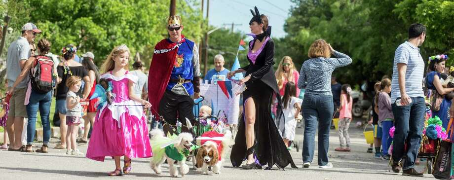 "Princes ""The Queen of Sequin""  a Chihuahua  owned by Leroy Montoya strolls down Alamo Heights during the 2016 Fiesta Dog Parade on Saturday, April 23, 2016.  Carlo Javier Sanchez / For The Express News Photo: Carlos Javier Sanchez, Carlos Javier Sanchez/For The Express News / Carlos Javier Sanchez"