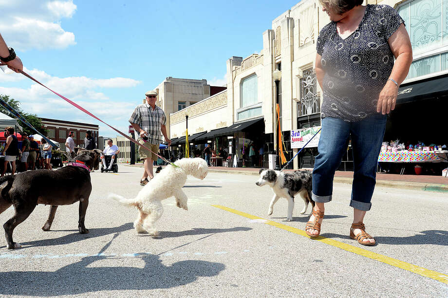 Dogs mingle as their owners take in the 3rd Annual OrleansOnOrleans, hosted by The Music Studio Saturday on Orleans Street in downtown Beaumont. The event brought together music, food, art and local vendors for a taste of New Orleans street festivities. Nearby, Ad Hoc Beaumont offered a day-long showing of artist Jason M. Miller's Glitch Landscapes & Ambient Soundscapes inside Copa. Photo taken Saturday, April 23, 2016 Kim Brent/The Enterprise Photo: Kim Brent / Beaumont Enterprise