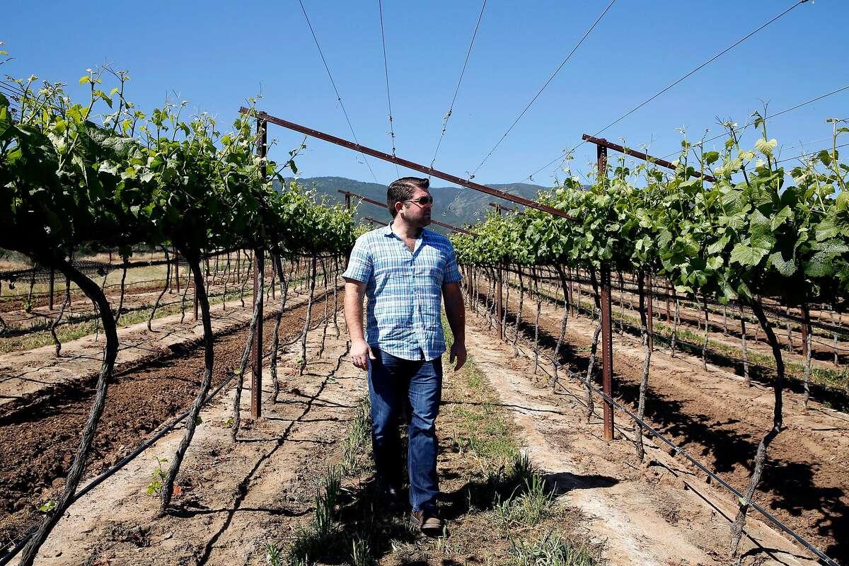 Joe Wagner walks through the Las Alturas vineyard at the Santa Lucia Highlands in Monterey County, California, on Monday, April 18, 2016.