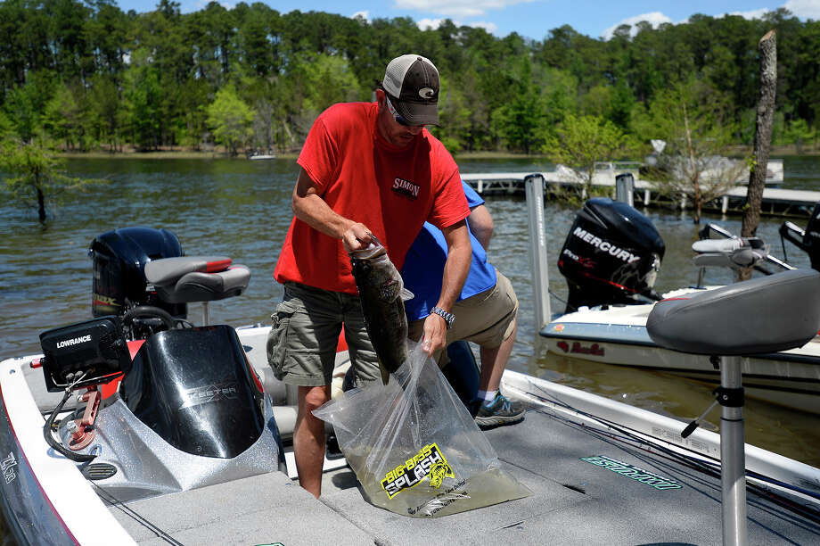 Terry Mullen, of Vidor, bags his fish to be weighed at the Big Bass Splash on Lake Sam Rayburn in Brookeland on Friday.  Photo taken Friday 4/22/16 Ryan Pelham/The Enterprise Photo: Ryan Pelham / ©2016 The Beaumont Enterprise/Ryan Pelham