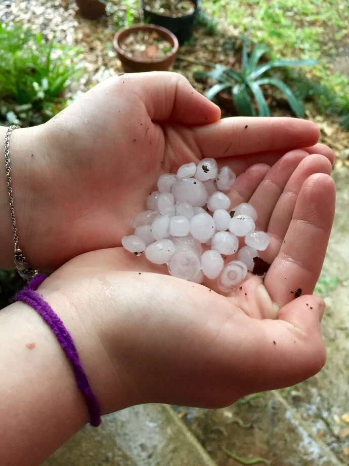 A handful of marble sized hail was collected on Shadwell Drive as a storm moved through the area on Monday, April 25, 2016. Photo Bob Owen. Photo: Bob Owen, San Antonio Express News