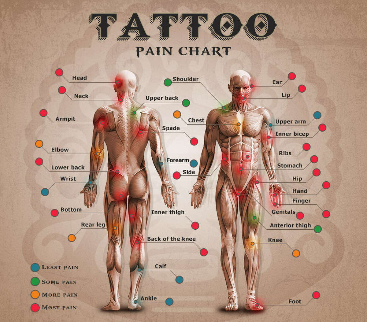 Tattoo lifestyle website TattooChief.com is hoping to aid people in judging the amount of physical pain that they could be in for when deciding on the placement of their next tattoo.