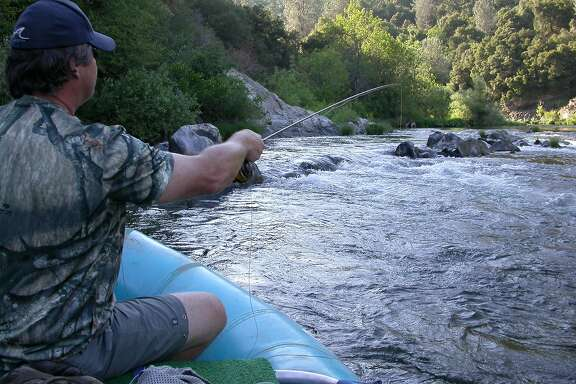 The bay area 39 s top 50 places for camping san francisco for 45 upper terrace san francisco