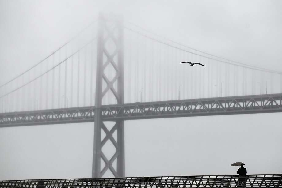 A pedestrian walks down a pier near the foggy Bay Bridge as it drizzles in the bay area. Photo: Leah Millis, The Chronicle