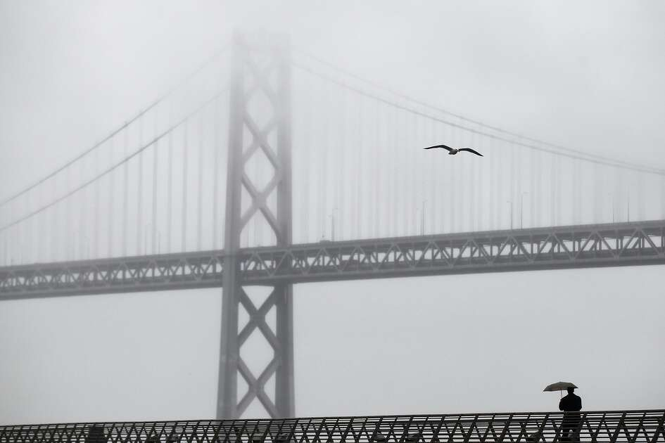 A pedestrian walks down a pier near the foggy Bay Bridge as it drizzles in the bay area Feb. 6, 2014 in downtown San Francisco, Calif. Rain is expected again on Saturday, with a chance of precipitation on Friday and Sunday.