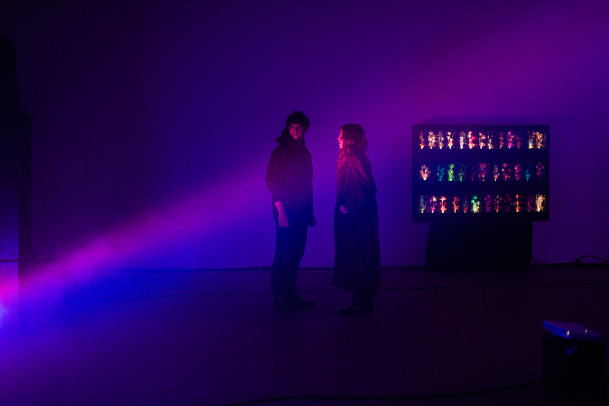 Beach House's SF intimate 'installation show' a vivid dream