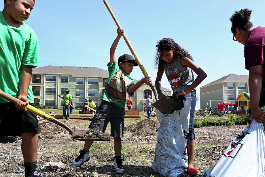 The Park at Sutton Oaks residents including Rayshaud Williams, 9, from left, Jeramiah Garcia, 7, Madelynn Shields, 12, and Nydriana Williams, 12, help with the Sutton Oaks Community Garden Project at the newly rebuilt apartment complex in San Antonio on May 17, 2014. Sutton Oaks, formerly Sutton Homes, was recently rebuilt as mixed-income housing. Photo: Lisa Krantz /San Antonio Express-News / SAN ANTONIO EXPRESS-NEWS