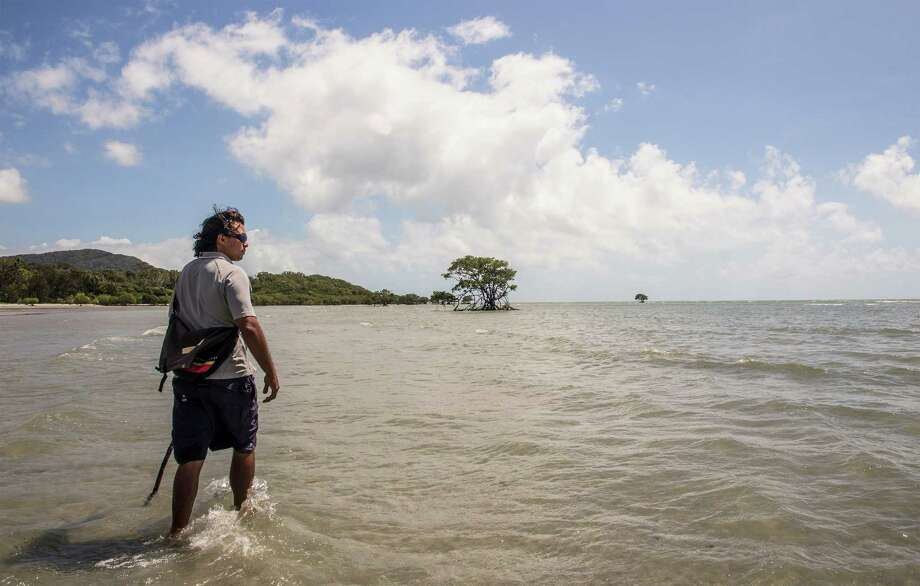 Juan Walker, a member of the Kuku Yulanji aboriginal tribe, walks through a small bay in Cape Tribulation, Australia. Walker, a guide, explained what plants and animals the aborigines use to survive. Photo: Joshua Trudell /For The Express-News / ©2016 Joshua Trudell