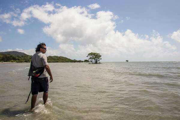 Juan Walker, a member of the Kuku Yulanji aboriginal tribe, walks through a small bay in Cape Tribulation, Australia. Walker, a guide, explained what plants and animals the aborigines use to survive.