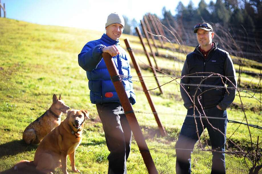 Arnot-Roberts winemakers Duncan Arnot Meyers (left) and Nathan Roberts with their dogs Django and Bowie at Bartolomei Vineyards in Forestville. Photo: Erik Castro, Special To The Chronicle