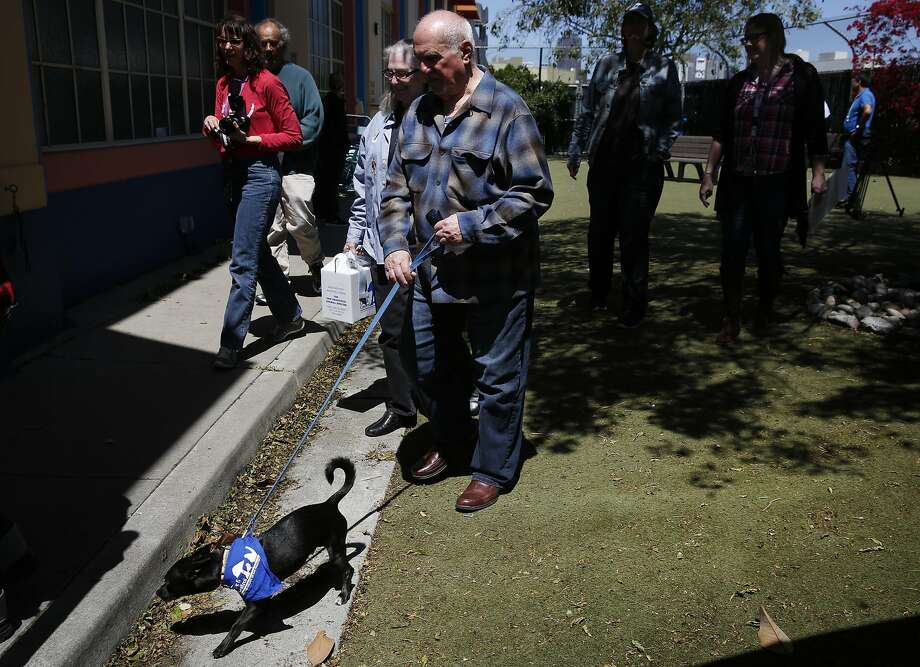 Spence and Marilyn (who preferred to withhold their last names) walk their new dog Ponch to their car at San Francisco Department of Animal Care & Control April 28, 2016 in San Francisco, Calif. Ponch is the dog that briefly led CHP officers on a chase that stopped traffic on the western span of the Bay Bridge earlier in April. Photo: Leah Millis, The Chronicle