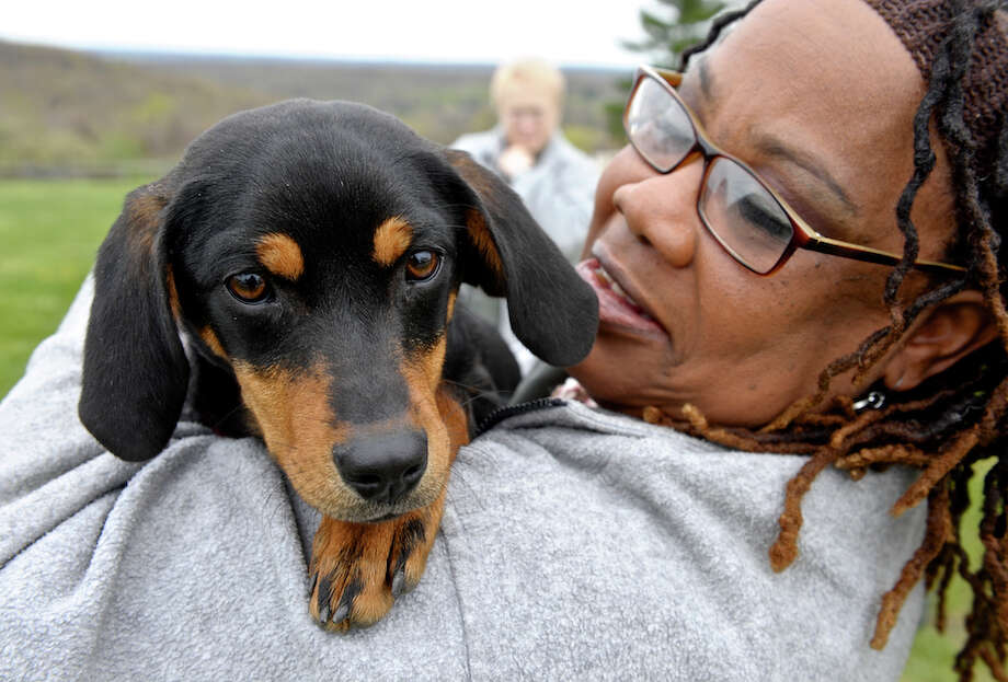 Linda Watkins gives Bitsy a hug at the Federal Correctional Institute, in Danbury. Both are taking part in a new program called Tails of Justice which takes shelter dogs and places them 24/7 with inmates who have been certified as handlers to help train the dogs and make them more adoptable. Thursday, April 28, 2016, in Danbury, Conn. Watkins has been certified as a handler and will train other inmates as part of the dog handler vocational training course. Photo: H John Voorhees III / Hearst Connecticut Media / The News-Times