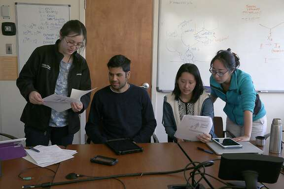 Left to right--UC Berkeley second year medical students Shirley Chan, Paul Carty-Soriano, Alina Kung, and Chan Park  attend a medical  problem based group study session at University Hall in Berkeley, California on friday, april 29, 2016.  UC Berkeley's 45-year-old medical program may be eliminated as it faces budget cuts in order to help deal with the university-wide deficit as Chan and other medical students start an advocacy group in opposition of the medical program's elimination.