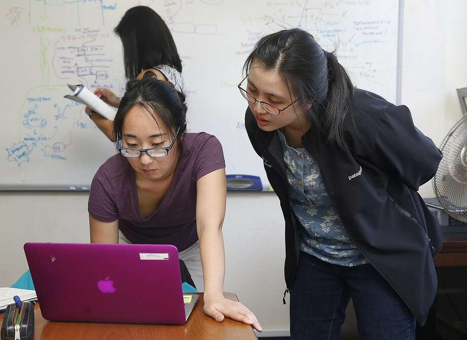 UC Berkeley second-year medical students Chan Park (left) and Shirley Chan attend a study session. Photo: Liz Hafalia, The Chronicle