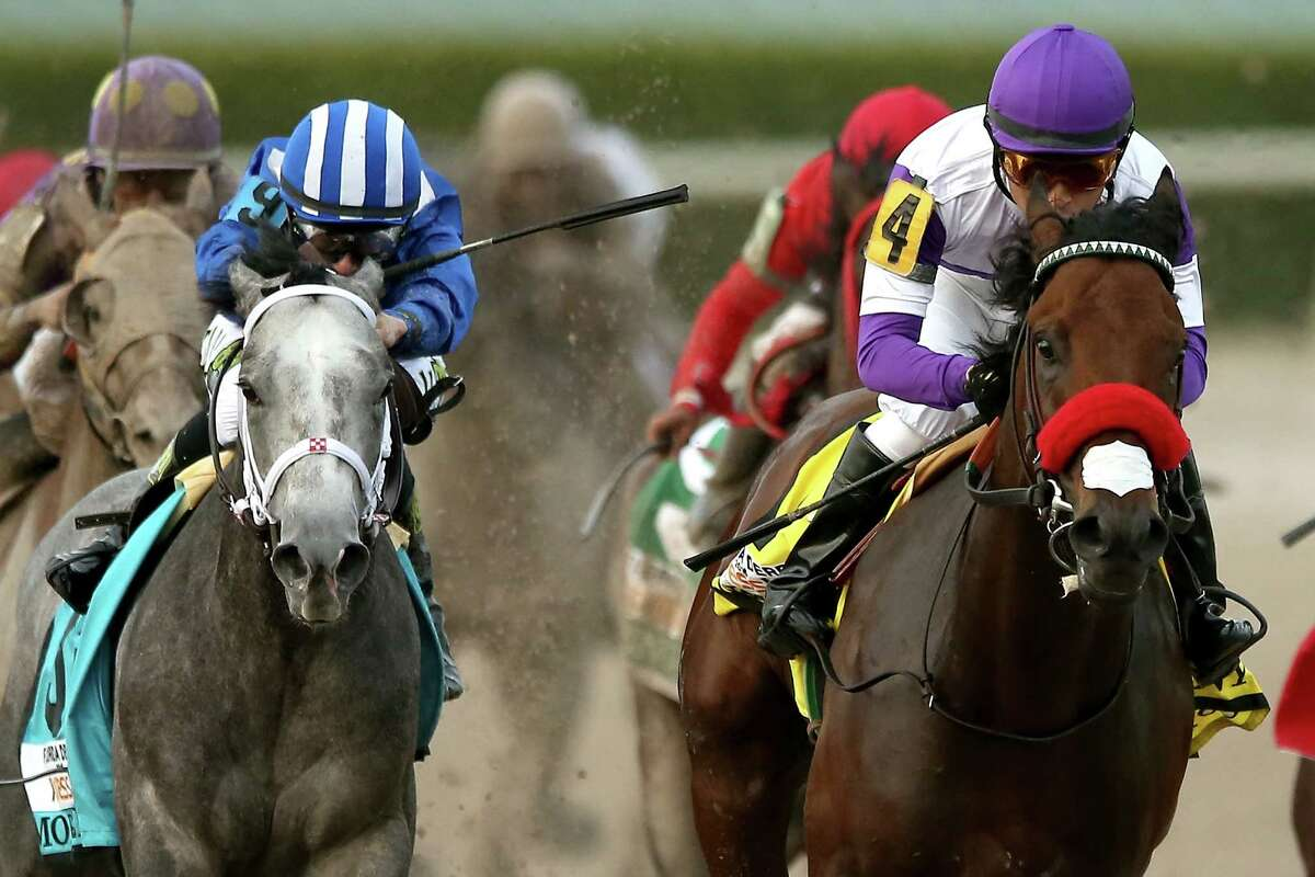 HALLANDALE, FL - APRIL 02: Nyquist #4, riden by Mario Gutuerrez, leads Mohaymen #9, riden by Junior Alvarado, out of turn four during the 2016 Florida Derby at Gulfstream Park April 2, 2016 in Hallandale, Florida. (Photo by Matthew Stockman/Getty Images) ORG XMIT: 625515071