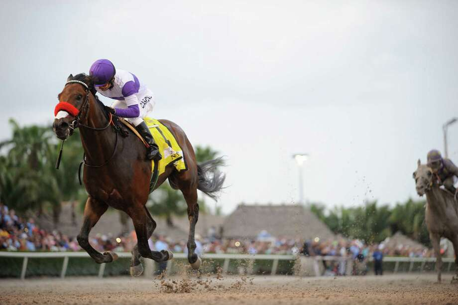 Nyquist is coming off a dominating victory in the Florida Derby, where he took the lead and never looked back, winning by 31/4 lengths. Photo: HONS / Coglianese Photos via Gulfstream Par
